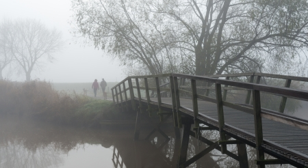 Man and woman walking with the dogs in a foggy Dutch landscape. photo