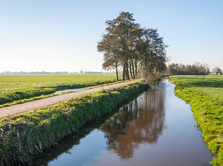 polder: Bicycle path next to the water pin a Dutch polder landscape in the autumn season.