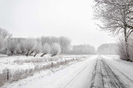 Rural landscape covered with snow with a road between the fields and trees. photo