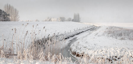Meandering ditch with frosted reeds in a snowy landscape with mottled gray sky because of the snowfall. photo