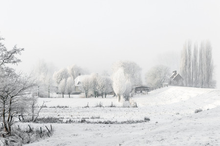 Dutch polder landscape on a cold and misty day in wintertime. photo
