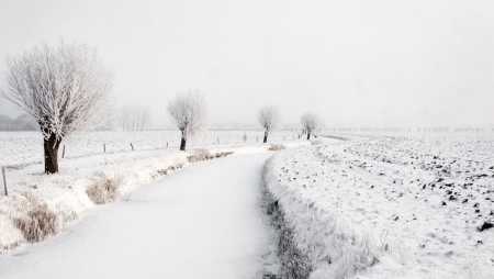 Meandering stream covered with ice and snow between farmland and a row of pollard willows with hoarfrost. Stock Photo