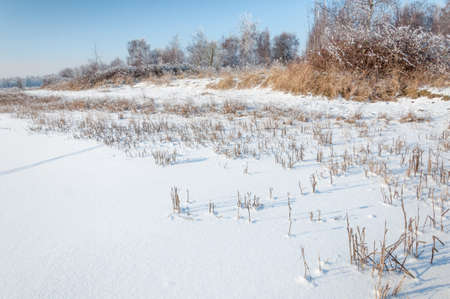 Mysterious wheel track in a pristine white natural area photo