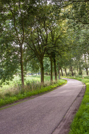 Winding asphalt road in a rural Dutch area with trees on both sides of the road  photo