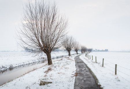 Ditch covered with a thin layer of ice and a curved narrow footpath trough a snowy agricultural landscape with a row of pollard willows reflected on the ice.