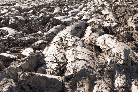 Closeup of the furrows in a clay farm field immediately after plowing at the end of the winter. photo