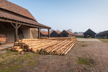 intended: On the grounds of an old abandoned brick factory in Belgium there is a big pile with long trunks intended for the restoration of the complex.