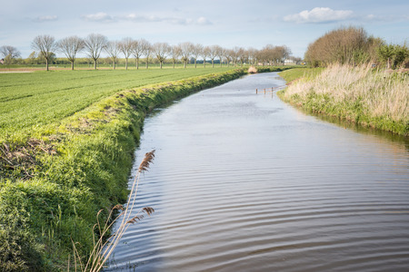 Small river meanders through the Dutch rural landscape in spring season. photo