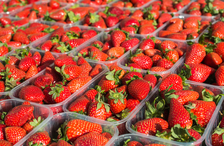 Appetizing red strawberries in transparent plastic containers photo