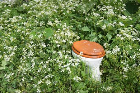 Wc-pot met houten wc-bril en deksel gedumpt in th wilde bloemen en planten van een natuurgebied