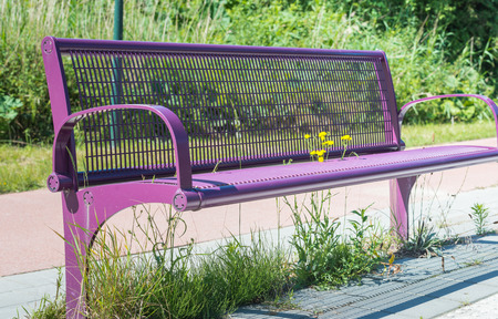 Yellow flowers growing through the metal mesh seat of a purple couch along the side of the road  photo
