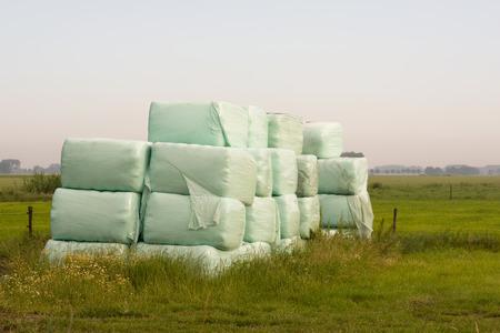 Gestapelde balen hooi geoogst omwikkeld met plastic film op een vroege ochtend in het begin van het zomerseizoen