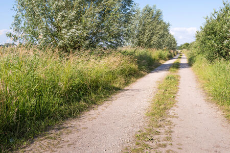 Seemingly endless dirt road with two tracks through a rural area in the Netherlands  Stock Photo - 29458269