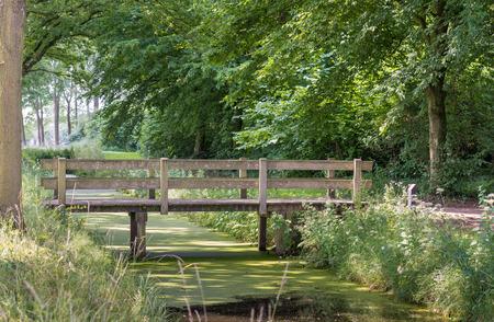 Kleine houten brug over een brede sloot bedekt met kroos