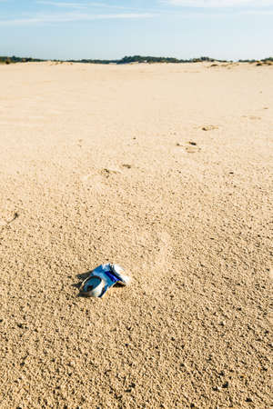 Empty can of an energy drink thrown out by a hiker in a large and sandy nature reserve.
