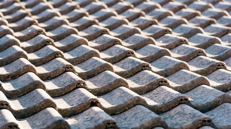 Closeup of a tiled roof in early morning light.