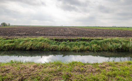 stubble field: Flat polder landscape on a cloudy day in the Netherlands with a large maize stubble field and in the foreground a ditch. Stock Photo