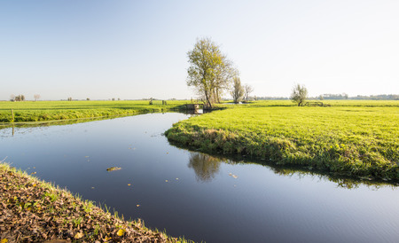 windless: Typical Dutch polder landscape with a stream with a mirror smooth water surface on a sunny and windless day in the fall season.