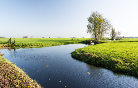 dutch typical: Typical Dutch polder landscape early in the morning with low autumn sunlight.