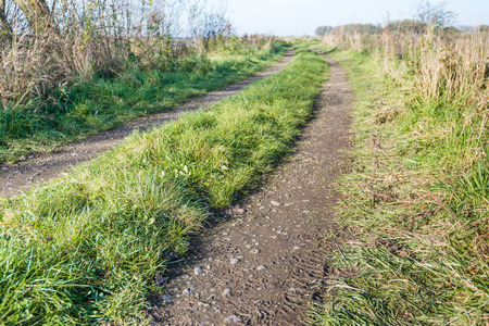A farm road with two tire tracks upwards in the grass. photo