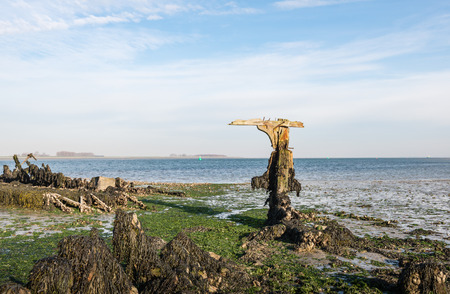 Remnants of an old ship wreck on the Dutch coast at low tide. Stock Photo
