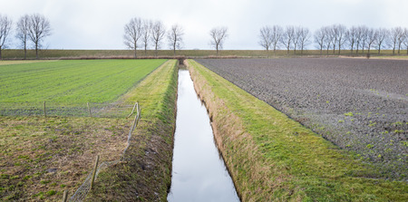 Flat farmland divided by a ditch on a cloudy day in the winter season. photo
