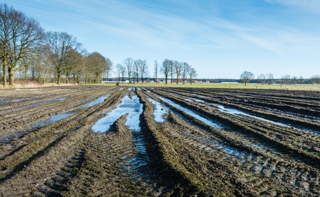 Wet Belgian farmland with tire tracks in the foreground and the edge of a small village in the background on a sunny day in the end of the winter season. photo