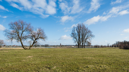 Silhouettes of leafless trees against the blue sky. Across the river between the trees you can see the tower of the Big Church in the Dutch town of Gorinchem.