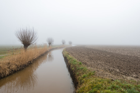 pollard: Curved ditch beside a plowed field and a row of leafless pollard willows reflected in the water surface. It is early in the morning on a foggy at the end of the winter season. Stock Photo