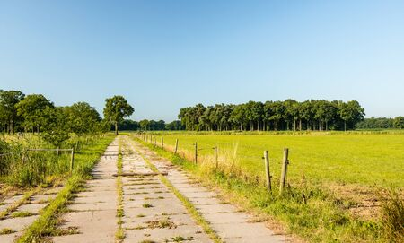 elektrischer Zaun: Electric fence on either side of a small concrete country road in Belgium.