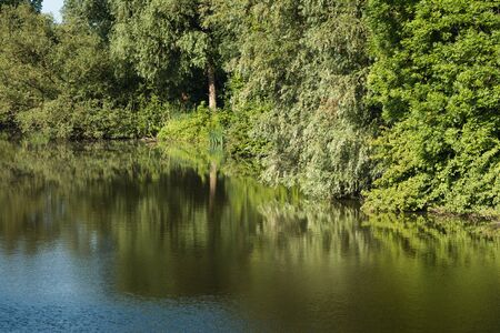 windless: On a windless day in the summer the green trees and bushes are reflected in the mirror smooth surface of a small river.