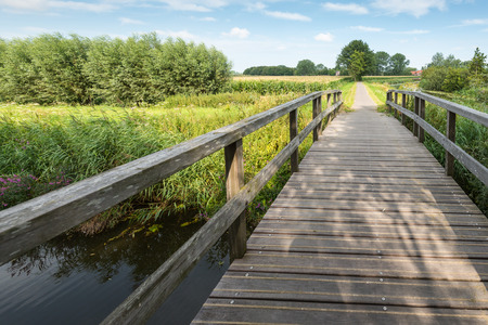 foot bridge: Wooden foot bridge over a small stream leading into a rural area in the Netherlands on a sunny day in the summer season.