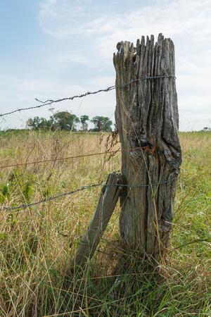 Close-up van een oude en verweerde houten post met prikkeldraad in een landelijk gebied in het zomerseizoen.