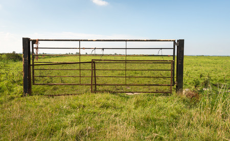 Rusty gate with gauze and ropes in a green meadow on a sunny day in the summer season.