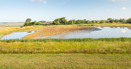agricultural area: Colorful landscape at the edge of an agricultural area in the summer season. In the foreground at the bottom of the dike an fence and reeds and in the middle a wetland area. Stock Photo