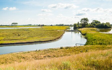 polder: Old Dutch polder landscape with creeks and many flowering wild plants on a sunny day in summer. Stock Photo