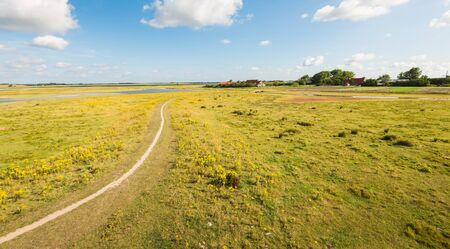 tortuous: Tortuous sandy walkway in a colorful nature Dutch area on a sunny day in the summer season. In the background are some farms with orange tiled roofs. Stock Photo