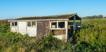 small roof: Old dilapidated small shed made of concrete slabs and with a corrugated roof overgrown with wild plants in early morning sunlight. Stock Photo