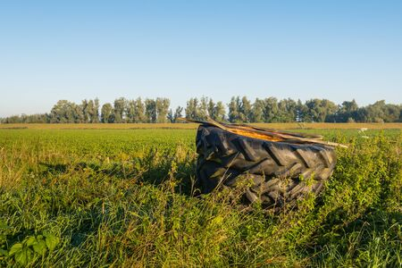 Covered with a rusty iron plate two large stacked tractor tires were left in the field. It's early in the morning on a sunny day in the beginning of the fall season. 写真素材