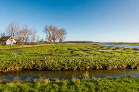 brackish water: Protected nature reserve in the Netherlands consisting of a swampy landscape and brackish water creeks. Its a sunny day in the fall season.