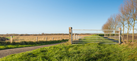 agricultural area: Galvanized steel gate locked with a padlock in an agricultural area with a dirt road and a row of bare trees. Its a sunny day in the autumn season.