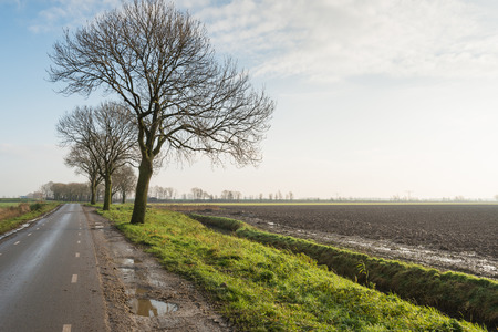 seemingly: Agricultural landscape with a plowed field, a ditch, a row of bare trees and a seemingly endless asphalt road. Stock Photo