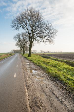 Agrarisch polderlandschap met een geploegde akker, een sloot, een rij van kale bomen en een schijnbaar eindeloze asfaltweg. Het is herfst. Stockfoto