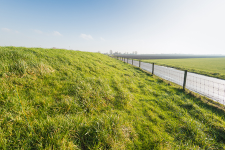 embankment: Typical Dutch landscape in the fall season with a grassy embankment, a long fence with gauze and wooden posts and a small country road.