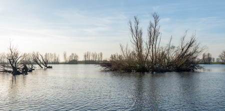 begun: Backlit image of flooded river foreland with bare trees reflected in the rippling water surface. The winter season has recently begun. Stock Photo