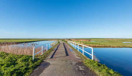 windless: Small bridge with a white railing bridge as part of a country road in a Dutch nature reserve on a sunny and windless day in the winter season.