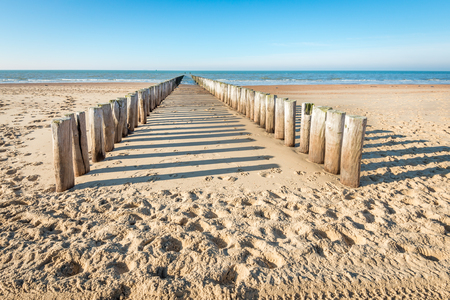 Two parallel rows of weathered wooden poles and their shadows on a sunny Dutch beach in winter. It is low tide now.