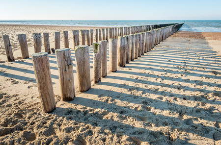 Two parallel rows of weathered wooden posts and their shadows on a sunny Dutch beach in winter. It is low tide now.
