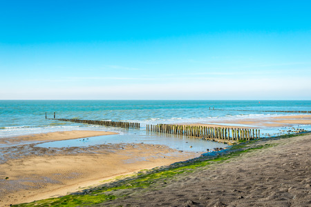 seawall: Overview of the Dutch North Sea coast with a long asphalt-covered seawall. In the sea is a traditional breakwater of rows of wooden poles. Its a sunny day in winter.