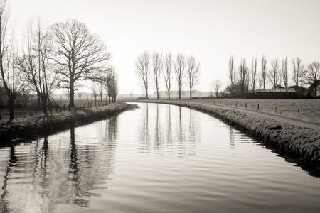 Monochrome atmospheric image of bare trees reflected in the water surface of a small Dutch river at dawn.